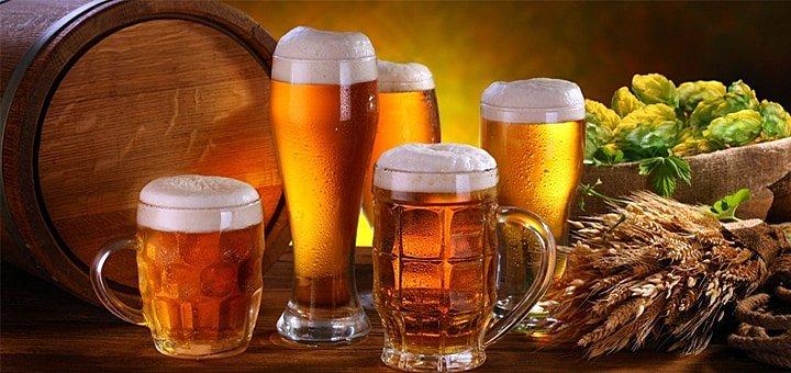 Надорвем животы, от пива, смеха и еды в пабе «ХОХМА»! Скидка на меню и бар!
