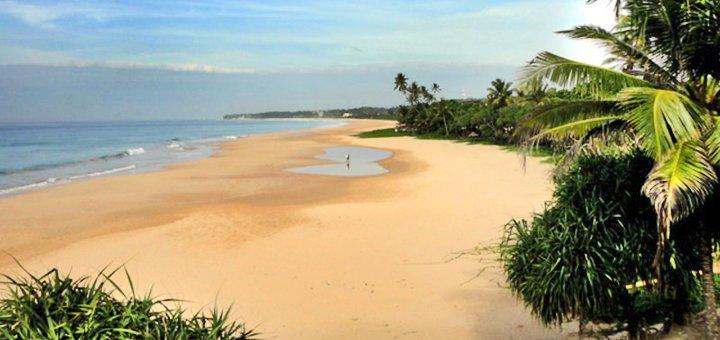 Скидка 8% на горящие туры на Шри-Ланку от агентства «Заманчивые туры»