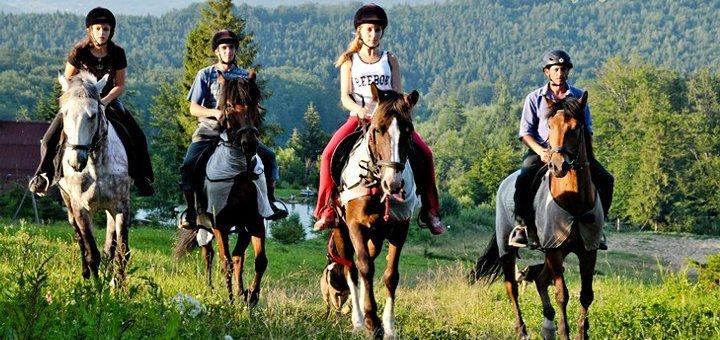 До двух часов прогулки на пони или лошади для взрослых и детей в конном клубе «Верхом»
