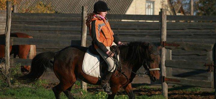 Скидка до 65% на прогулки на лошадях или занятия по верховой езде в конюшне «Идиллия»