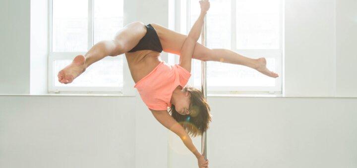 До 48 занятий pole dance в танцевальной студии «Life in Dance»