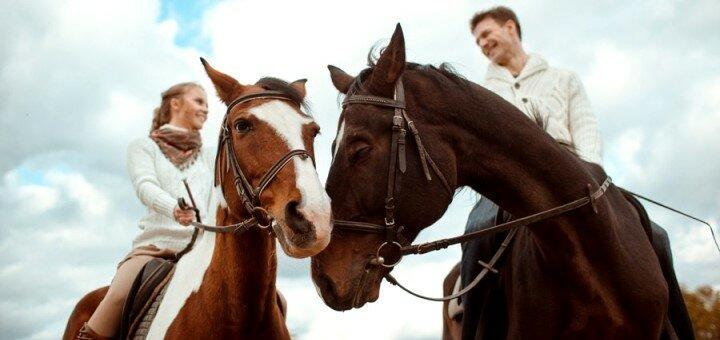 Скидка до 77% на конные прогулки от клуба «Скиф»