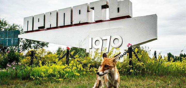 Тур в Чернобыльскую зону в выходные от «Сhernobyl Exclusive Tours»