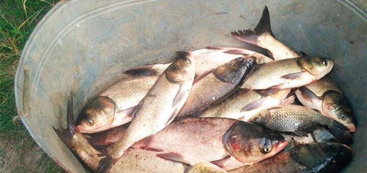 Зимняя рыбалка для одного на озере Глория в рыбоводческом хозяйстве «Gloriya Fishing»