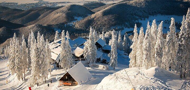 От 3 дней зимнего отдыха с питанием в эко-комплексе «Рута» под Буковелем